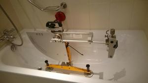 Bath pendulum